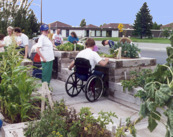 Wheelchair-accessible beds at Rollandet garden